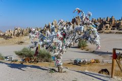 Verfraaide boom in Cappadocia, Turkije royalty-vrije stock foto