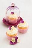 Verfraaide Cupcakes Stock Afbeeldingen