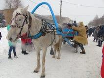 Verfraaide door paarden getrokken reis die wachten op Royalty-vrije Stock Foto