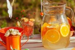 Verfraaide picknick met sinaasappelen en limonade in de zomer Stock Foto