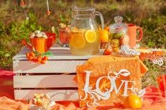 Verfraaide picknick met sinaasappelen en limonade in de zomer Stock Fotografie