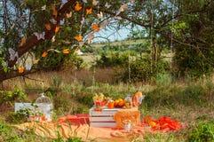 Verfraaide picknick met sinaasappelen en limonade in de zomer Royalty-vrije Stock Foto