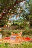 Verfraaide picknick met sinaasappelen en limonade in de zomer Royalty-vrije Stock Fotografie