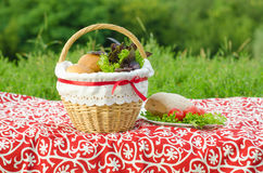 Verfraaide picknickmand en plaat, broodjes en bos van basilicum en salade, groen landschap Stock Foto's