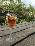 Verfrissend glas van fruitcocktail Royalty-vrije Stock Afbeeldingen