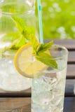 Verfrissend water met citroen en munt Stock Fotografie