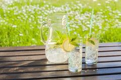 Verfrissend water met citroen en munt Stock Afbeelding