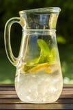 Verfrissend water met citroen en munt Stock Foto's