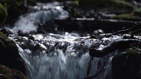 Verfrissende bergstroom in de bergen onder natte rotsen stock videobeelden