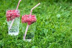Verfrissende de zomerdrank met sodawater en verse bessen Royalty-vrije Stock Fotografie