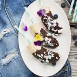 Verfrissende dessert van de Chocobanana maakte het Lichte zomer van bevroren die banaan Eskimo in een van donkere chocolade wordt Royalty-vrije Stock Afbeeldingen