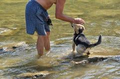 Verfrissende gang in rivier in hete sommer stock fotografie