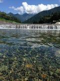 Verfrissende onderdompeling in de rivier op een hete de zomerdag Stock Afbeeldingen