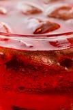 Verfrissing: Ijs in een glas in een Rode Vloeistof Royalty-vrije Stock Fotografie