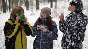 Vergaderingskerstmis in het bos stock footage