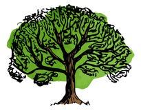 Vergankelijke met de hand geschetste boom Stock Fotografie
