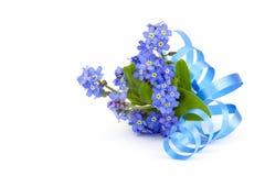 Vergeet me niet bloemen royalty-vrije stock foto's