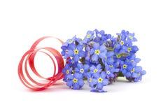 Vergeet me niet bloemen stock fotografie