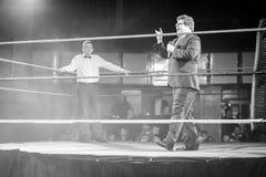 In de ring Royalty-vrije Stock Afbeelding