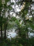 Verger à côté de la rivière images libres de droits