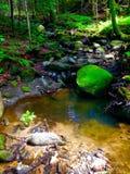 Verger enchanteur de rivière Photographie stock libre de droits