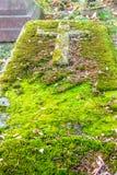 Vergeten grafsteen Royalty-vrije Stock Fotografie