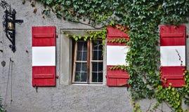 Vergipste Wand mit Fenster, grünen Reben, antiker Glocke und hölzernen Fensterläden Lizenzfreie Stockbilder