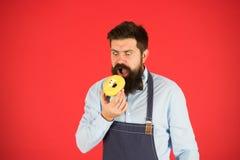 Verglaasde doughnut van de Hipster de gebaarde bakker greep op rode achtergrond Koffie en bakkerijconcept Zoete doughnut van bakk royalty-vrije stock foto's