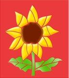 Verglaasde zonnebloem Royalty-vrije Stock Foto