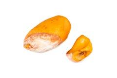 Vergleich zwischen großer harter Vielzahl gegen kleine dünne weiche Samenvielzahl der Durianfrucht Lizenzfreies Stockfoto