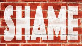 Vergonha em uma parede de tijolo Imagens de Stock