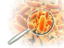 Vergrootglas en ziekteverwekkerbacteriën Royalty-vrije Stock Foto's