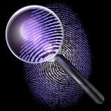 Vergrootglas over de vingerafdruk van het puntnet, natuurlijk tonen, aangestoken uv Royalty-vrije Stock Afbeeldingen