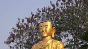 Verguld groot Lordboedha standbeeld in Lumbini stock video