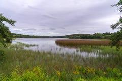 Verhärteter See Carrigallen, Irland Stockbild