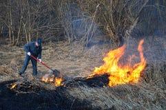 Verheerendes Feuer. Stockfotos