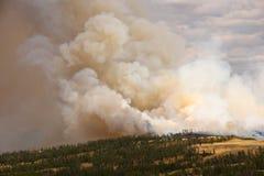 Verheerendes Feuer in Yellowstone lizenzfreie stockfotografie