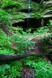Verhungerter Felsen-Nationalpark Stockfotos
