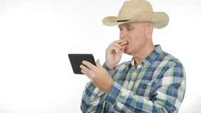 Verhungerter Landwirt Eat Sandwich und gelesene Tablet-Mitteilung lizenzfreies stockfoto