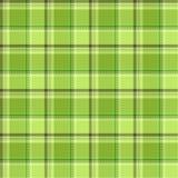 Verificaciones del verde Imagen de archivo libre de regalías