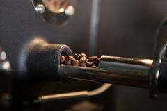 Verifying freshly roasted coffee beans - soft focus Stock Photos
