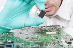 Verifying Microchip Stock Photo