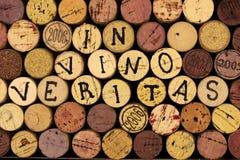 In veritas del vino. Fotografie Stock Libere da Diritti