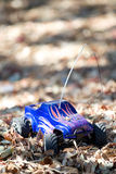 Veritcal of toy RC truck in leaves. In partial shade Royalty Free Stock Image