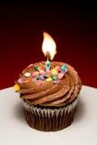 Verjaardag Cupcake II Stock Foto