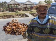 Verkäufer von chickenwings in Afrika Stockfotos