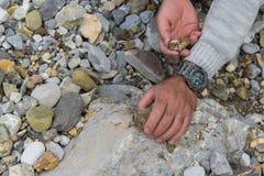 ?verkant ner sikten av manhanden som forskar mineraler Geologisk ockupation i naturen royaltyfria bilder