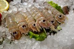 Verkauf der frischen Garnele am Fischmarkt Stockbild