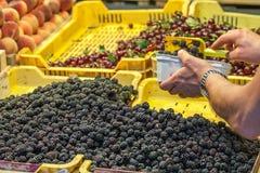 Verkauf der Himbeere in einem Fruchtstand Lizenzfreies Stockfoto