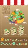 Verkauf des Gemüses infographic Stockfotos